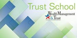 Texas Trust School