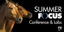 Student Track: Summer Focus Conference & Labs